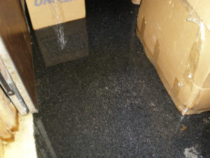 Avoid a Flooded Basement