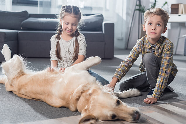 Children Playing with Dog Indoor with Heating