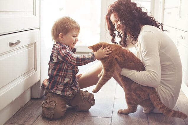 Mom and Son Petting the Cat Indoor with Heating